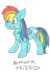 Size: 716x1037   Tagged: safe, artist:cmara, rainbow dash (mlp), equine, fictional species, mammal, pegasus, pony, feral, friendship is magic, hasbro, my little pony, female, grin, gritted teeth, mare, smiling, solo, teeth, traditional art