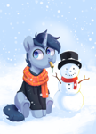 Size: 1920x2657 | Tagged: safe, artist:pucksterv, oc, oc only, oc:tesseract, equine, fictional species, mammal, pony, unicorn, friendship is magic, my little pony, 2019, carrot, clothes, commission, eating, feral, hat, herbivore, hoodie, male, scarf, simple background, sitting, snow, snowman, solo, solo male, winter, ych result