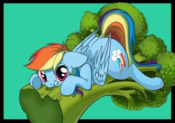 Size: 900x634 | Tagged: safe, artist:taneysha, rainbow dash (mlp), equine, fictional species, mammal, pegasus, pony, friendship is magic, my little pony, blue feathers, blue fur, broccoli, cute, cutie mark, eating, feathered wings, feathers, female, feral, fur, hair, herbivore, magenta eyes, mane, mare, plant, rainbow hair, rainbow mane, rainbow tail, solo, solo female, tail, vegetables, wings