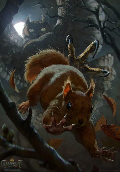 Malefemale duo brown squirrel