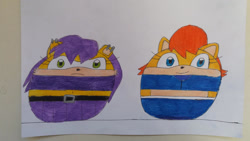 Size: 1024x576 | Tagged: safe, artist:95damian, mina mongoose (sonic), princess sally acorn (sonic), archie sonic the hedgehog, sega, sonic the hedgehog (series), ball, female, morph ball, traditional art, transformation