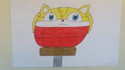 Size: 3265x1837 | Tagged: safe, artist:95damian, zooey the fox (sonic), canine, fox, mammal, sega, sonic boom (series), sonic the hedgehog (series), ball, female, morph ball, solo, solo female, traditional art, transformation, vixen