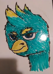 Size: 2226x3080   Tagged: safe, gallus (mlp), bird, feline, fictional species, gryphon, mammal, friendship is magic, hasbro, my little pony, :c, >:c, angry, beak, bust, dry erase board, frowning, glare, hair, marker drawing, mohawk, portrait, scowl, spiky hair, traditional art